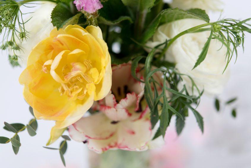 british spring flowers